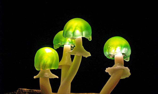 lamp-Yukio-Takano_08_670 (1)